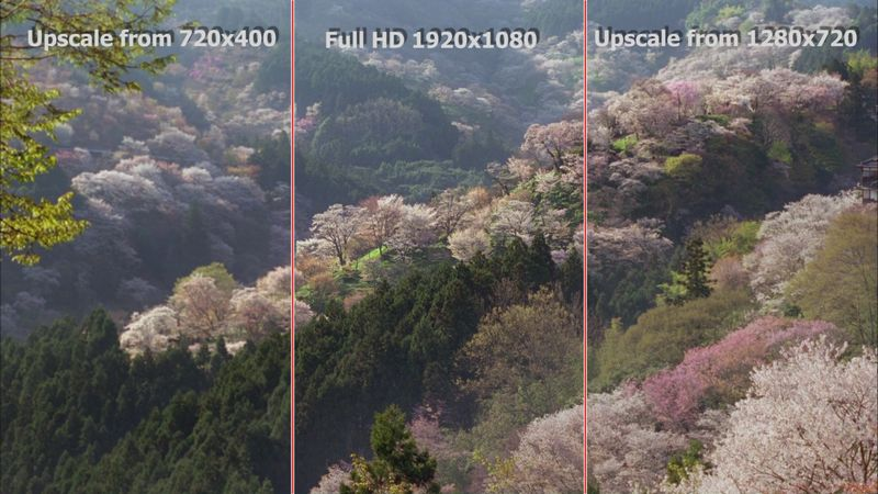 HD Test 1080p vs 720p vs DVD 3 JPG